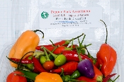 Fresh Hot Pepper assortment
